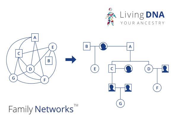 Living DNA Family Networks illustration